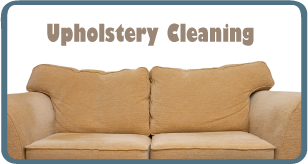Expert upholstery cleaning.